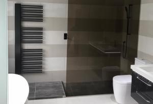 Laminated Glass Shower